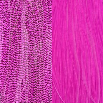Duo Plumes Pink
