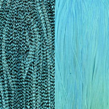 Duo Plumes Silver Blue