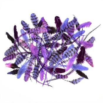Lot de 50 Plumes de Frange Coloris Purple Rain: 17 € H.T.