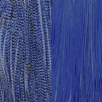 Duo Plumes Royal Blue