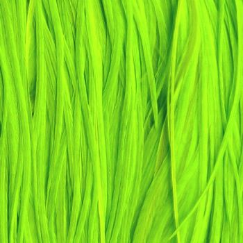Plume Unie Fluo Green