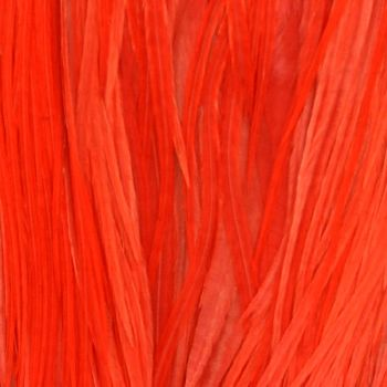 Plume Unie Red