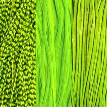 Trio Plumes Fluo Green