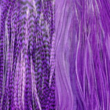 Duo Plumes Purple