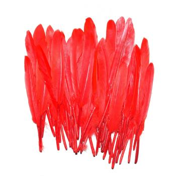 Lot de 50 Plumes à Chignon: Red